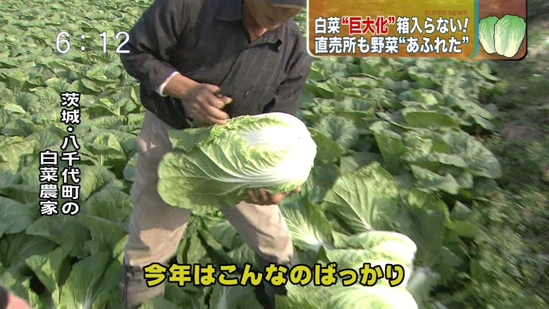 関東の野菜は放射能に汚染されてるの?安全なの?