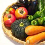 野菜はどこで買うのが、一番新鮮で安全で栄養があるの?