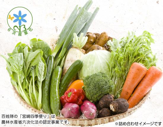 http://shop.hyakushoutai.jp/?pid=41186835